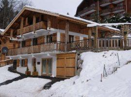 Superb ski chalet