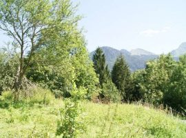 Beautiful land for sale